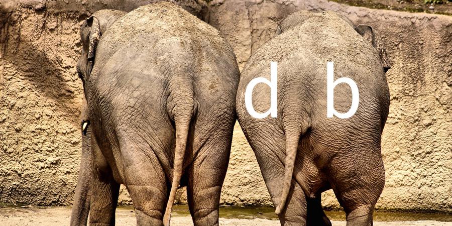 Dikke billen olifant - Ik kan het ook!